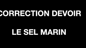 "Correction du devoir ""Le sel marin""."